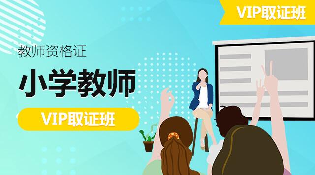 小学教师-VIP取证班